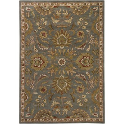 Chandra Rugs Bajrang Gray Rug