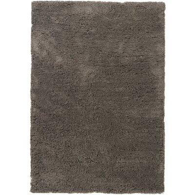 Chandra Rugs Bancroft Shag Grey Rug