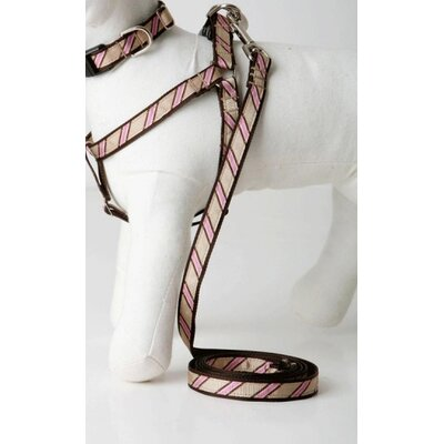Lola and Foxy Varsity Stripe Dog Lead