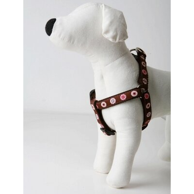 Lola and Foxy Lola Dog Harness