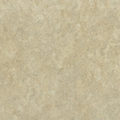 "Shaw Floors Palmetto 17"" x 17"" Floor Tile in Beige"