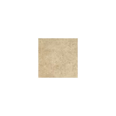 "Shaw Floors Costa D'Avorio 17"" x 17"" Floor Tile in Café"