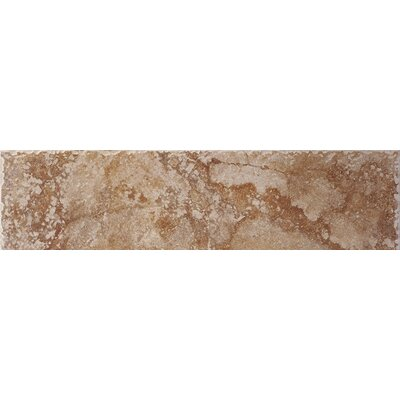 "Shaw Floors Capri 12"" x 3"" Bullnose Tile Trim in Bronze"