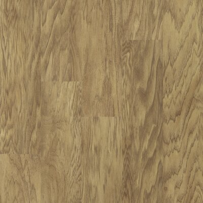 Shaw Floors Plaza Collection 12mm Laminate in Havanna Hickory
