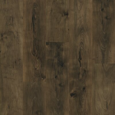 Shaw Floors Natural Values II 6.5mm Pine Laminate in Bridgeport