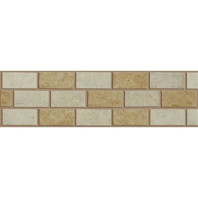 "Shaw Floors Palmetto 10"" x 3"" Wall Listello in Multi"