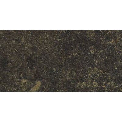 "Shaw Floors Lunar 3"" x 6"" Porcelain Tile in Graphite"