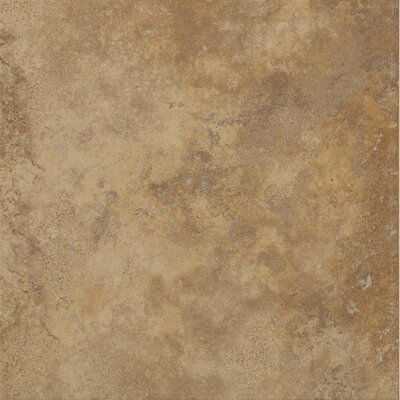 "Shaw Floors Soho 18"" x 18"" Porcelain Tile in Walnut"