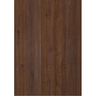 "Shaw Floors Sumter Plank Ls Array 7"" x 48"" Vinyl in Ashville"