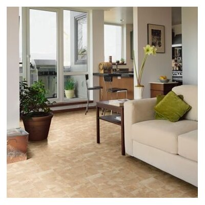 Shaw Floors Majestic Visions 8mm Laminate in Brookhurst