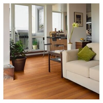 Shaw Floors Salvador 8mm Laminate in Tigerwood