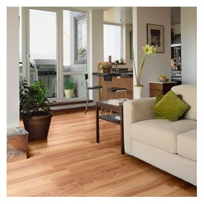 Shaw Floors Salvador 8mm Laminate in Cypress