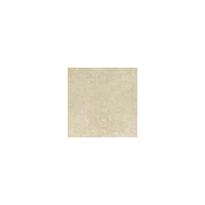 "Shaw Floors Home 10"" x 13"" Wall Tile in Bone"