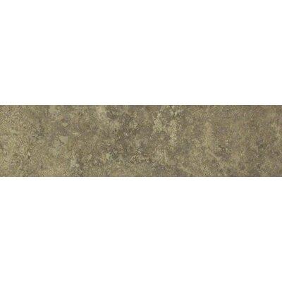 "Shaw Floors Lunar 12"" x 3"" Bullnose Tile Trim in Noce"
