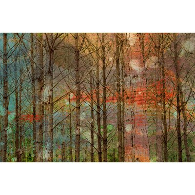 Through the Trees Painting Prints on Canvas