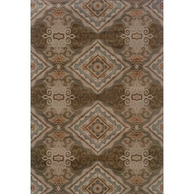 Adrienne Grey/Brown Rug