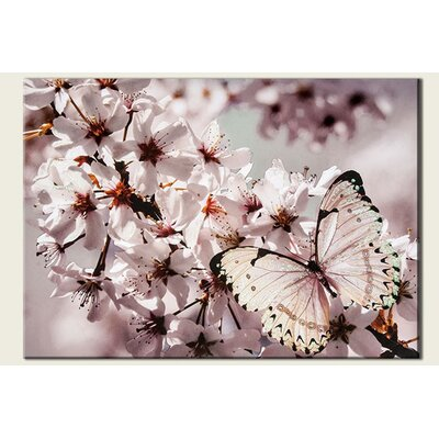 Butterfly Branch with Glitter Photographic Print on Canvas