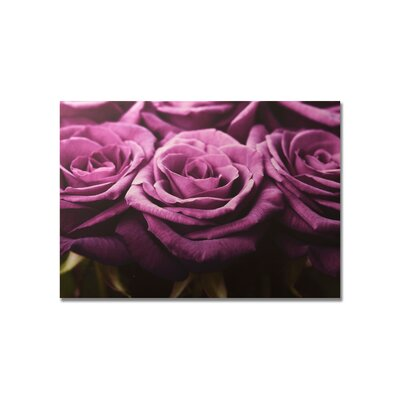 "Graham & Brown Plum Roses Row Printed Canvas Art - 30"" X 40"""