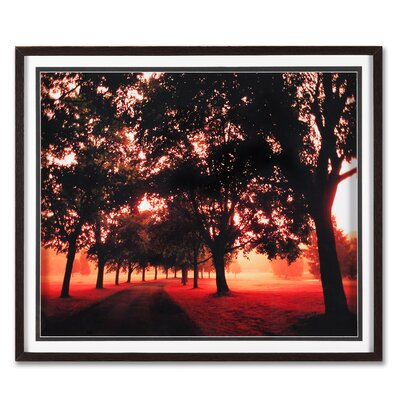 "Graham & Brown Morning Walk Framed Print Art - 24"" X 28"""