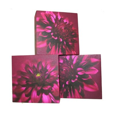 Graham and Brown Dahlia Trio Blocks 3 Piece Painting Print on Canvas Set
