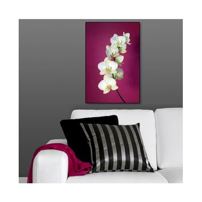 Graham & Brown Fucshia Orchid Lacquer Art