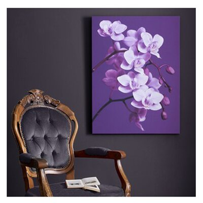 Graham & Brown Orchid Painting Print on Canvas