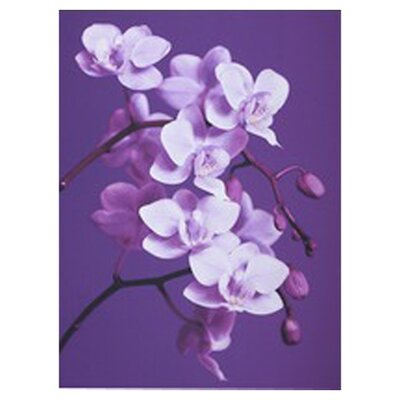 Orchid Painting Print on Canvas