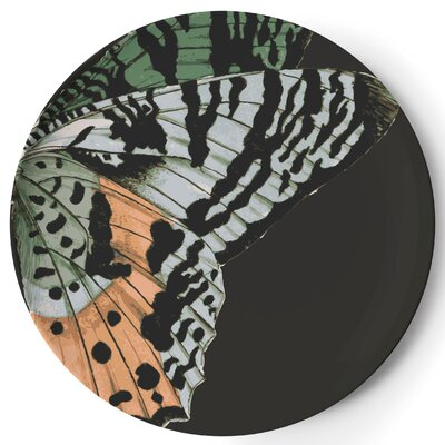 "Thomas Paul Metamorphosis 11"" Dinner Plate"