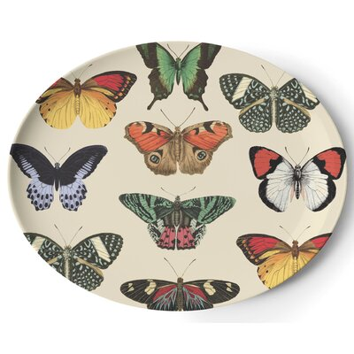 "Thomas Paul Metamorphosis 14.5"" Oval Platter"