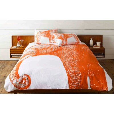 Thomas Paul Lion Shams (Set of 2)