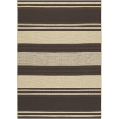 Five Seasons South Padre Chocolate Indoor/Outdoor Rug