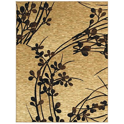 shaw rugs mirabella cordoba gold black rug
