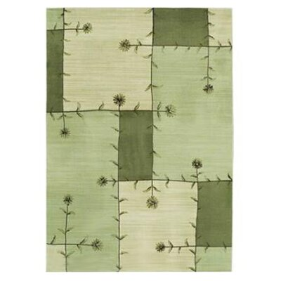Modern Elements Janis Light Green/Grey Rug