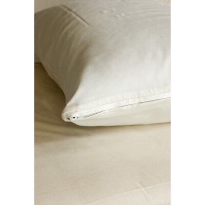 Coyuchi Sateen Pillow Protector