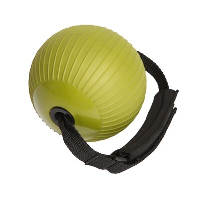Natural Fitness Soft Weighted Ball