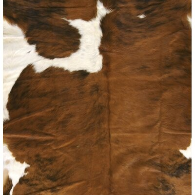 Surya Rug Duke Brown/White Rug