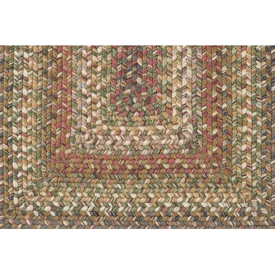 Surya Jamestown Coffee Bean / Dark Khaki Rug