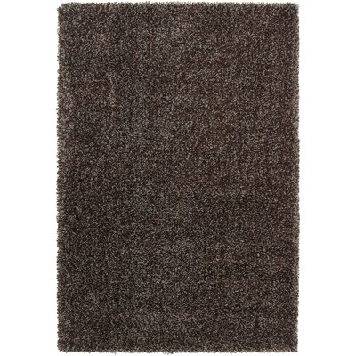 Luxury Dark Chocolate / Foggy Blue / Grey Sage Shag Rug