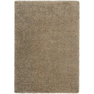 Luxury Tan / Foggy Blue / Grey Sage Shag Rug