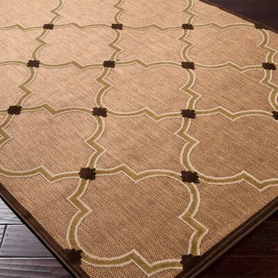 Surya Portera Brown/Tan Outdoor Rug