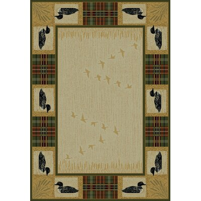 United Weavers of America Genesis Tartan Loon Novelty Rug