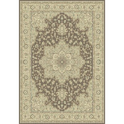 Dynamic Rugs Imperial Brown/Cream Rug