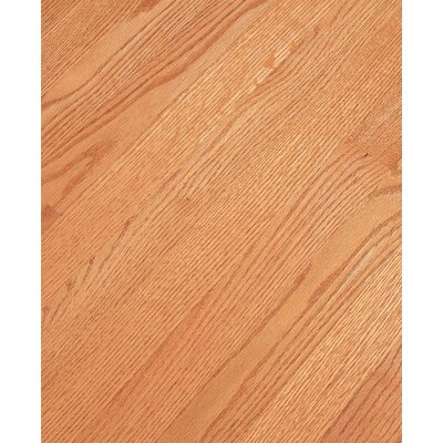 Bruce Flooring SAMPLE - Fulton™ Plank Solid Red Oak in Butterscotch