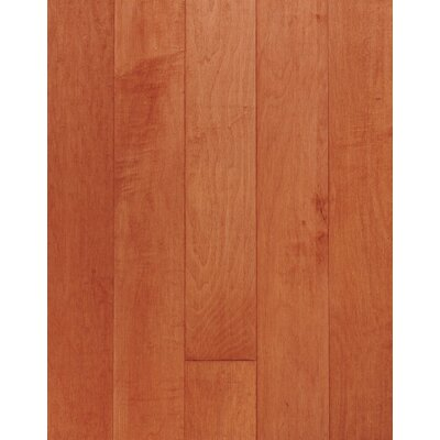 Bruce Flooring SAMPLE - Kennedale® Strip Solid Maple in Cinnamon