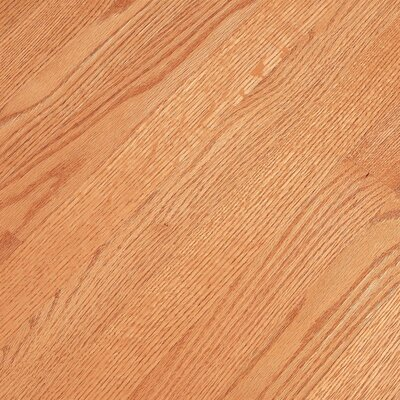 "Bruce Flooring Bristol 3-1/4"" Solid Red Oak Flooring in Butterscotch"