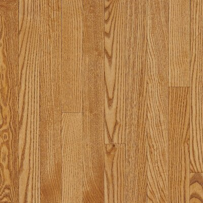 "Bruce Flooring Dundee Plank 3-1/4"" Solid White Oak Flooring in Spice"