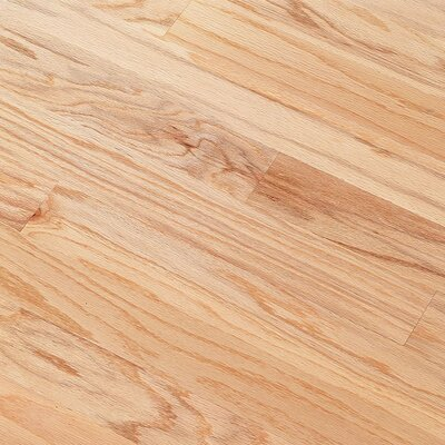 "Bruce Flooring Northshore Plank 5"" Engineered Red Oak Flooring in Natural"