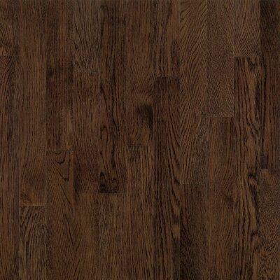 "Bruce Flooring Dundee Plank 3-1/4"" Solid White Oak Flooring in Mocha"