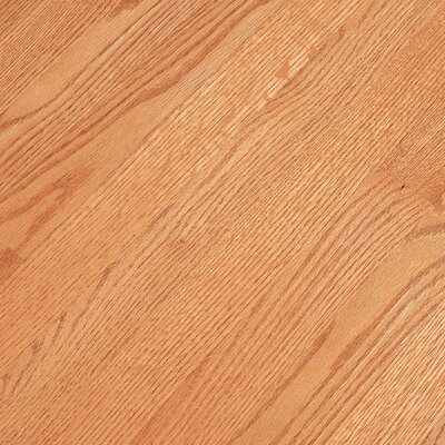 "Bruce Flooring Fulton Low Gloss Strip 2-1/4"" Solid Red Oak Flooring in Butterscotch"