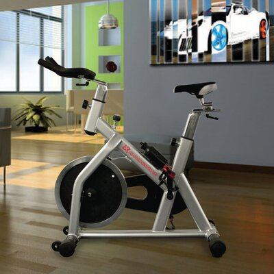 Momentum Indoor Cycling Bike